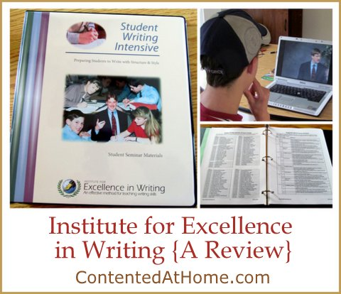 excellence in writing reviews