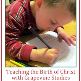 Teaching the Birth of Christ with Grapevine Studies