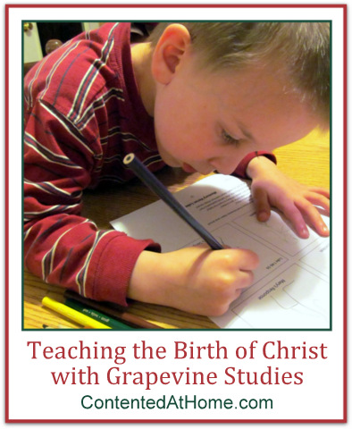 Birth of Christ Grapevine Studies