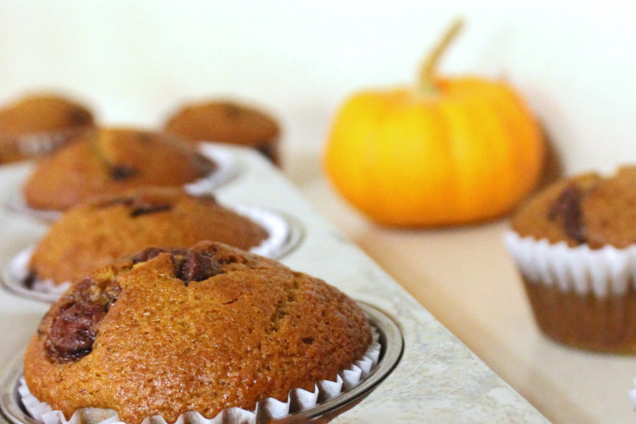 Pumpkin chocolate chip muffins in a muffin tin with a pumpkin