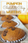 Pumpkin chocolate chip muffins in a baking tin with a pumpkin in the background