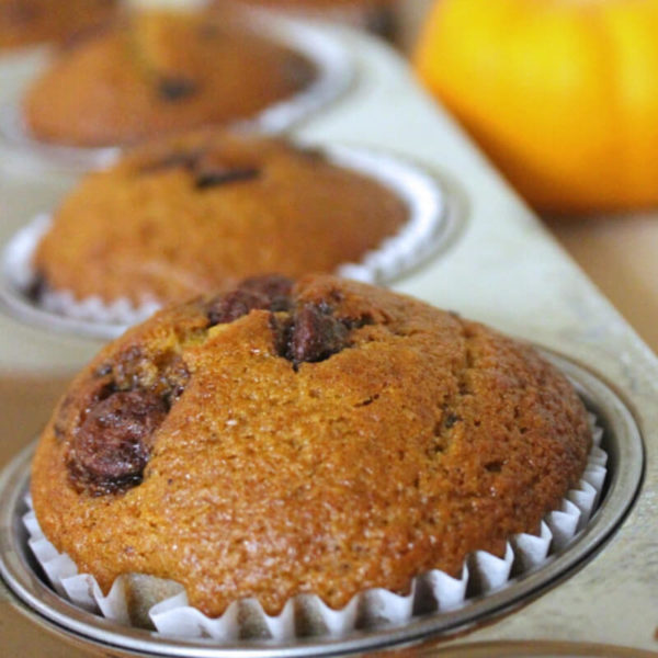 Pumpkin chocolate chip muffins in a baking tin
