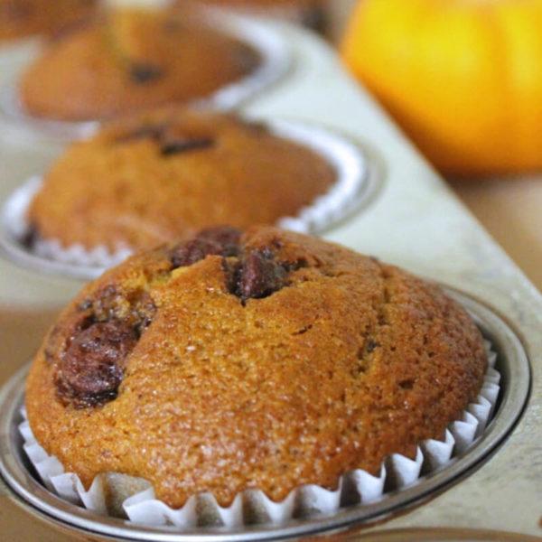 Pumpkin chocolate chip muffins in a baking tin