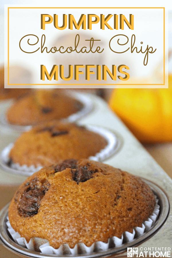 Pumpkin chocolate chip muffins in a muffin tin with a pumpkin