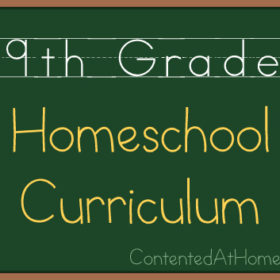 Ninth Grade Homeschool Curriculum {2013-2014}