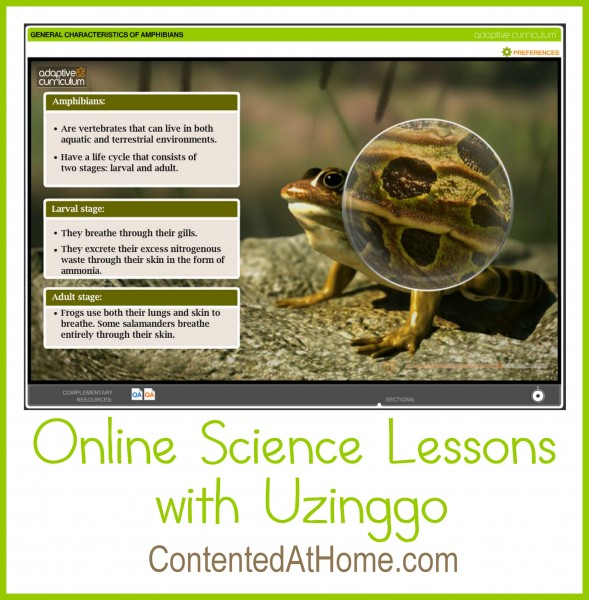 Screenshot of online science lesson from Uzinggo