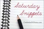 Saturday Snippets (2/11/14)