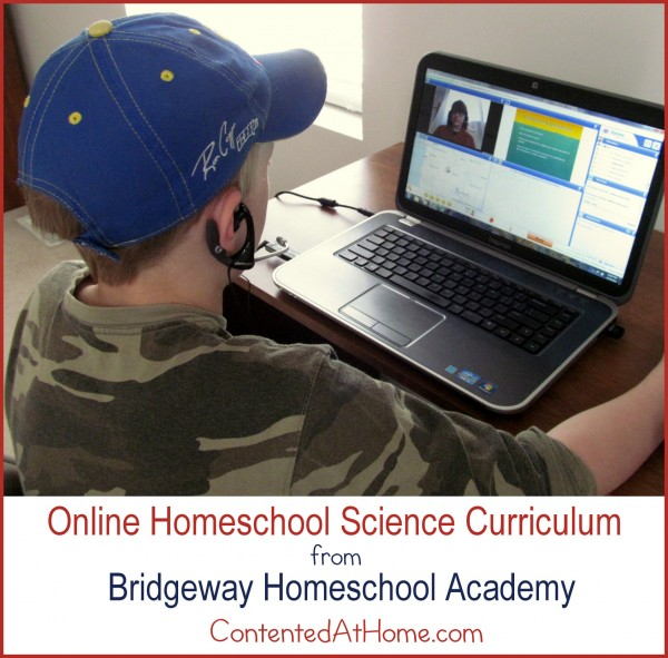Boy using laptop to participate in online homeschool class