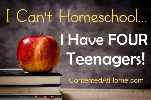 I Can't Homeschool