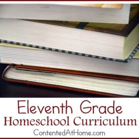 Eleventh Grade Homeschool Curriculum {2014-2015}