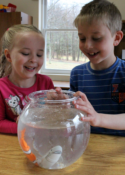 Young brother and sister watching motorized fish toys swimming in fishbowl