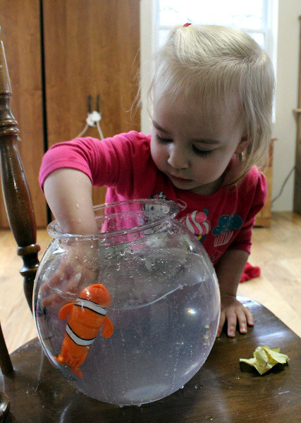 Lil' Fishys motorized fish toys for kids