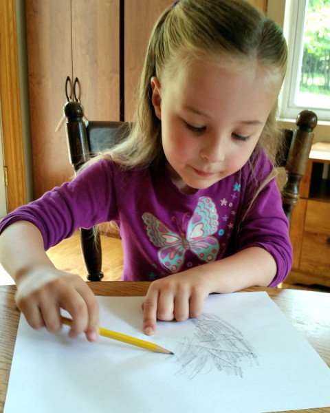 Young girl doing a leaf rubbing with a pencil