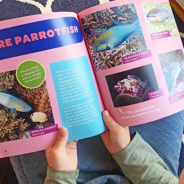 Open children's book in a child's hands