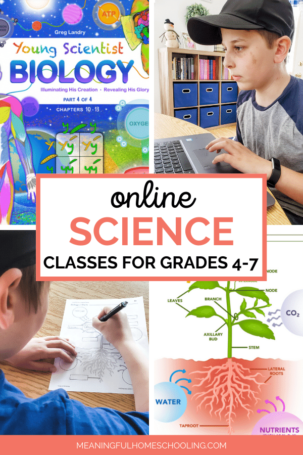Pictures of student working on homeschool science class online