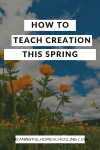 How to teach creation this spring.