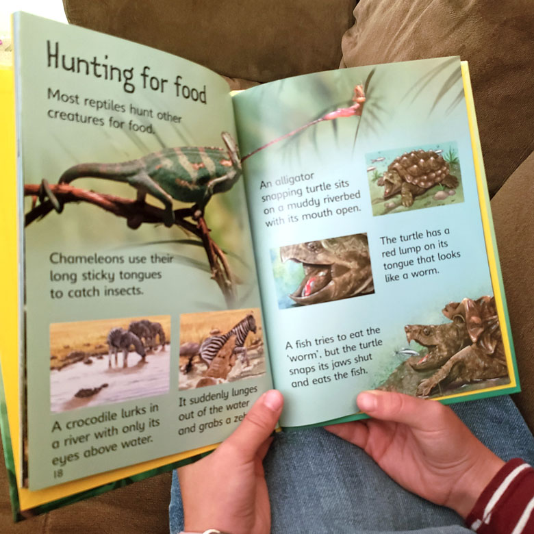 Little girl's hands holding an open science book with pictures of reptiles