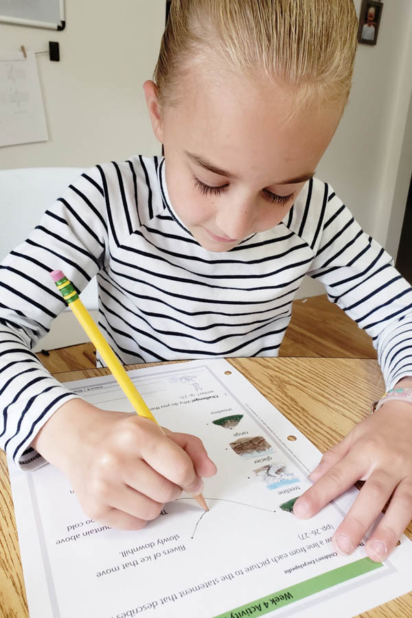 Young girl in striped shirt using a pencil to complete a science activity sheet